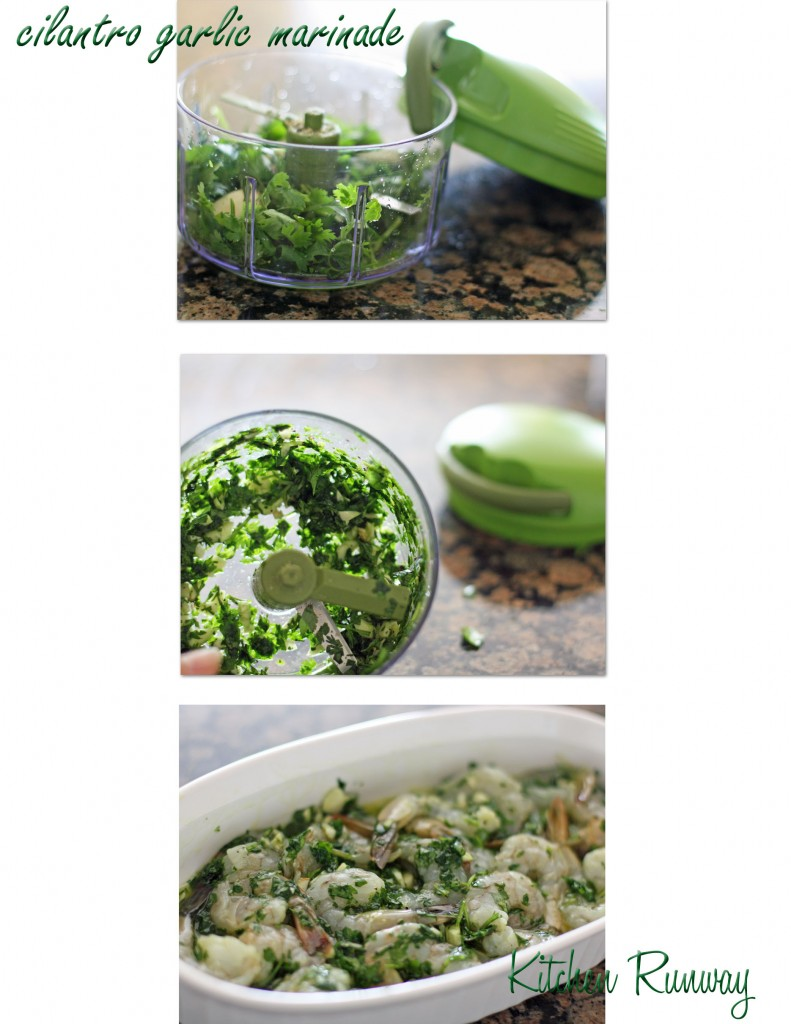 cilantro garlic marinade