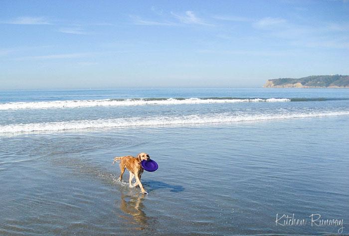 Taylor Coronado Beach