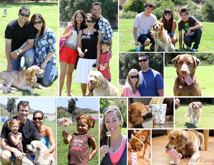 dog party collage