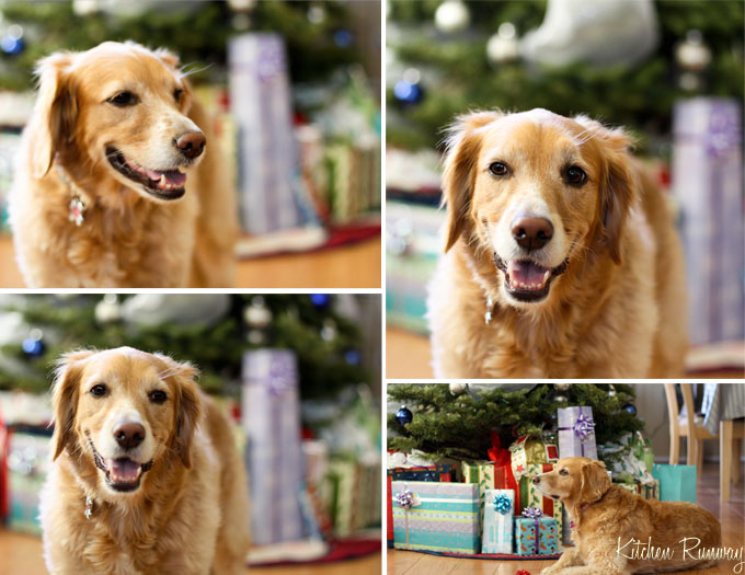 Taylor Christmas Collage